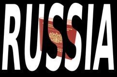 Ρωσικά έγγραφα προσδιορισμού διανυσματική απεικόνιση
