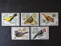 Ρωσικά γραμματόσημα με τα πουλιά στοκ εικόνα