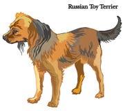 Ρωσική διανυσματική απεικόνιση τεριέ παιχνιδιών Στοκ Εικόνες