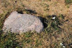 Ρωσική κρύα πέτρα με την κίτρινη και πράσινη χλόη στοκ εικόνες