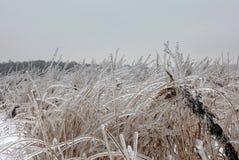 Ρωσικός ισχυρός χειμώνας στοκ εικόνες με δικαίωμα ελεύθερης χρήσης
