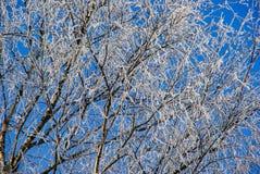 Ρωσικός χειμώνας της Ρωσίας Kirillov Στοκ Φωτογραφίες