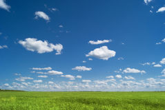 Ρωσικό διάστημα Οι πράσινοι τομείς της περιοχής του Σαράτοβ κάτω από το μπλε ουρανό και τα όμορφα σύννεφα Στοκ φωτογραφία με δικαίωμα ελεύθερης χρήσης