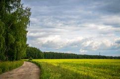 Ρωσικό πεδίο Στοκ εικόνα με δικαίωμα ελεύθερης χρήσης