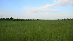 Ρωσικό τοπίο φιλμ μικρού μήκους