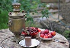 ρωσικό τσάι στοκ εικόνες με δικαίωμα ελεύθερης χρήσης