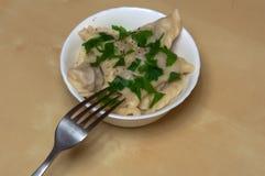 Ρωσικό pelmeni σε ένα πιάτο στοκ εικόνα με δικαίωμα ελεύθερης χρήσης