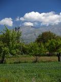 ρόδα καρφιτσών lassithi στοκ φωτογραφία με δικαίωμα ελεύθερης χρήσης