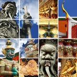 ρόδα προτύπων συλλογής α&ups Στοκ Εικόνα