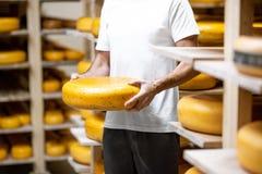Ρόδα τυριών εκμετάλλευσης στην αποθήκευση στοκ φωτογραφία με δικαίωμα ελεύθερης χρήσης