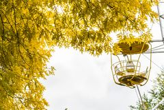 Ρόδα Ferris στο πάρκο φθινοπώρου η πόλη φθινοπώρου στεγάζει τα δέντρα φύλλων κίτρινα Στοκ Φωτογραφία
