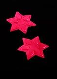 Ρόδινα αστέρια τσεκιών Στοκ φωτογραφία με δικαίωμα ελεύθερης χρήσης