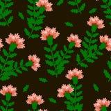 Ρόδινα γαρίφαλα με τα πράσινα φύλλα σε ένα σκοτεινό καφετί υπόβαθρο απεικόνιση αποθεμάτων