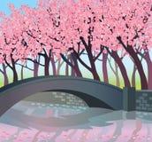 ρόδινα δέντρα ποταμών Απεικόνιση αποθεμάτων