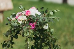 Ρόδινα και άσπρα τριαντάφυλλα Στοκ εικόνα με δικαίωμα ελεύθερης χρήσης