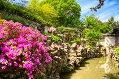 Ρόδινα λουλούδια και λεπτομέρειες του ιστορικού κήπου Yuyuan κατά τη διάρκεια της θερινής ηλιόλουστης ημέρας στη Σαγκάη, Κίνα στοκ εικόνες