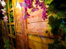 Ρόδινα λουλούδια και ξύλινοι τοίχοι στοκ φωτογραφίες