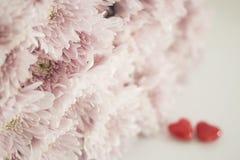 Ρόδινα λουλούδια με την κεραμική μορφής δύο καρδιών στοκ εικόνες με δικαίωμα ελεύθερης χρήσης