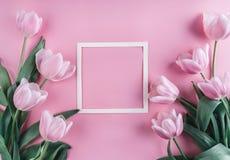Ρόδινα λουλούδια τουλιπών και φύλλο του εγγράφου πέρα από το ανοικτό ροζ υπόβαθρο Πλαίσιο ή υπόβαθρο ημέρας βαλεντίνων Αγίου στοκ φωτογραφία