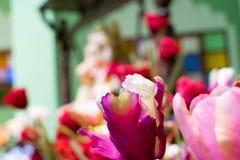 Ρόδινα λουλούδια φιαγμένα από ύφασμα Διακοσμήστε το δωμάτιο στοκ εικόνα με δικαίωμα ελεύθερης χρήσης