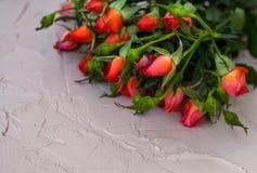 Ρόδινα μικρά τριαντάφυλλα σε ένα ελαφρύ υπόβαθρο με το κενό διάστημα για το κείμενο r στοκ φωτογραφίες