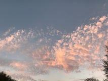 Ρόδινα σύννεφα Memes Altocumulus καραμελών βαμβακιού Στοκ Φωτογραφίες