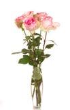 ρόδινα τριαντάφυλλα δεσμώ Στοκ Φωτογραφία