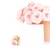 ρόδινα τριαντάφυλλα δοχ&epsilo Στοκ εικόνες με δικαίωμα ελεύθερης χρήσης