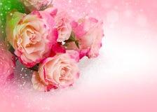 Ρόδινα τριαντάφυλλα λουλουδιών στο ρόδινο υπόβαθρο Στοκ φωτογραφία με δικαίωμα ελεύθερης χρήσης