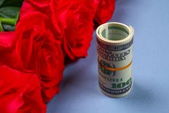 Ρόδινα τριαντάφυλλα με τους λογαριασμούς δολαρίων αντί ενός δώρου Πρότυπο για την 8η Μαρτίου, ημέρα της μητέρας, ημέρα του βαλεντ Στοκ εικόνες με δικαίωμα ελεύθερης χρήσης