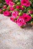 Ρόδινα τριαντάφυλλα στο ελαφρύ υπόβαθρο Στοκ εικόνα με δικαίωμα ελεύθερης χρήσης