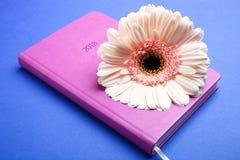 Ρόδινα gerbera και ημερολόγιο Στοκ Εικόνα