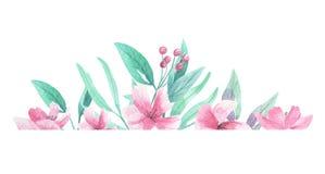 Ρόδινες λουλουδιών συνόρων πλαισίων Floral ανθίσεις αψίδων Watercolor Aqua πράσινες διανυσματική απεικόνιση