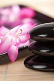 ρόδινες πέτρες SPA λουλουδιών Στοκ Εικόνα