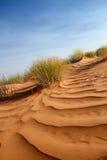 ρόδινη άμμος αμμόλοφων Στοκ Εικόνα