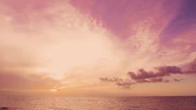 Ρόδινη ανατολή χρονικών περιτυλίξεων αυγής πέρα από τους φοίνικες παραλιών θάλασσας απόθεμα βίντεο