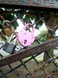 Ρόδινη αποτύπωση λουκέτων αγάπης σε ένα μεταλλικό δίχτυ στοκ εικόνες