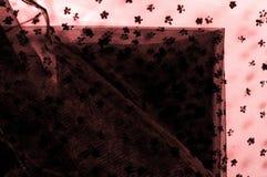 Ρόδινη δαντέλλα στο άσπρο υπόβαθρο Το Extravagance και η κομψότητα είναι COM στοκ εικόνα