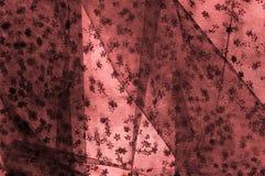 Ρόδινη δαντέλλα στο άσπρο υπόβαθρο Το Extravagance και η κομψότητα είναι COM στοκ εικόνες με δικαίωμα ελεύθερης χρήσης