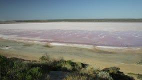 Ρόδινη επιφυλακή λιμνών απόθεμα βίντεο