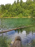 Ρόδινη λίμνη, αλλά πράσινος στοκ φωτογραφία με δικαίωμα ελεύθερης χρήσης