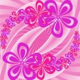ρόδινη πορφύρα λουλουδ&iota ελεύθερη απεικόνιση δικαιώματος