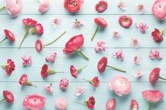 ρόδινη συλλογή λουλουδιών Στοκ φωτογραφία με δικαίωμα ελεύθερης χρήσης