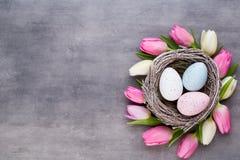 Ρόδινη τουλίπα με τη ρόδινη φωλιά αυγών σε ένα γκρίζο υπόβαθρο Gree Πάσχας στοκ φωτογραφία με δικαίωμα ελεύθερης χρήσης