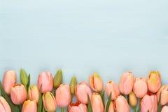 Ρόδινη τουλίπα στο εκλεκτής ποιότητας ξύλινο υπόβαθρο Ευχετήρια κάρτα ημέρας μητέρων στοκ φωτογραφίες