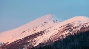 Ρόδινη χειμερινή θέα βουνού πρωινού ανατολής Στοκ φωτογραφίες με δικαίωμα ελεύθερης χρήσης