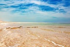 Ρόδινοι ακτή και μπλε ουρανός της νεκρής θάλασσας στοκ εικόνες με δικαίωμα ελεύθερης χρήσης