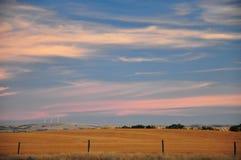 Ρόδινοι και μπλε ουρανοί λιβαδιών στοκ φωτογραφία