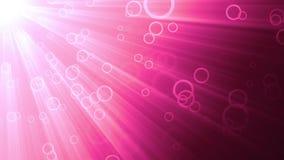 Ρόδινοι κύκλοι και ελαφριές ακτίνες διανυσματική απεικόνιση