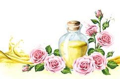 Ρόδινος αυξήθηκε κάρτα λουλουδιών και ουσιαστικού πετρελαίου aromatherapy SPA Συρμένη χέρι απεικόνιση Watercolor, που απομονώνετα διανυσματική απεικόνιση